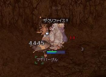 f0080899_21115827.jpg