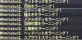 b0024026_348234.jpg