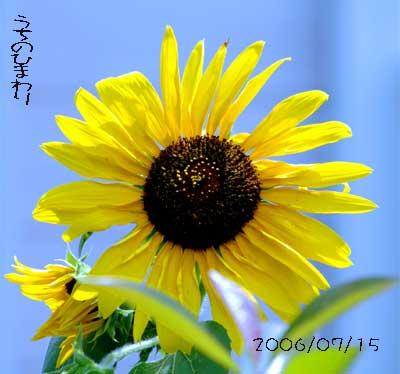 b0012811_13501027.jpg