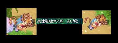 f0024635_5285040.jpg