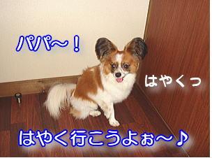 f0011845_16473640.jpg