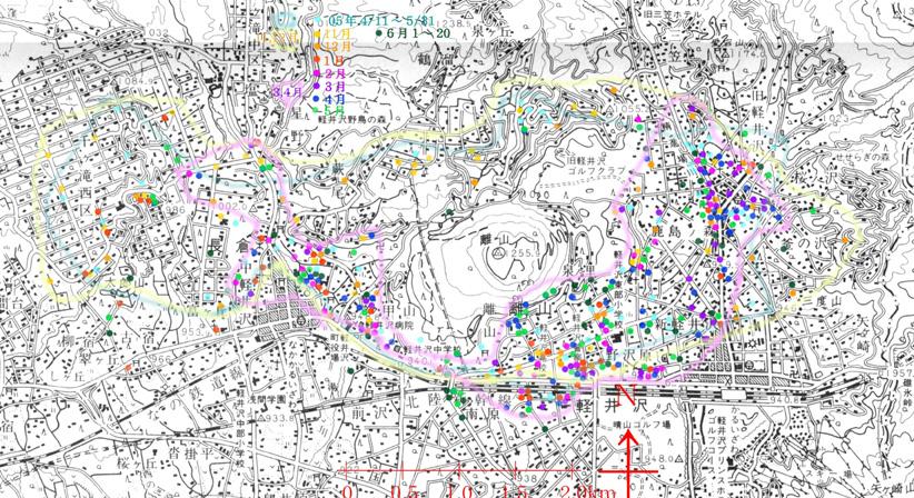 7月前半、クワの実を追って行動域が変化  2006.7.15. 報告T.M._e0005362_10423296.jpg