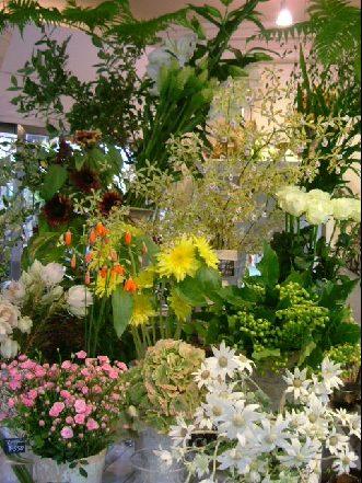オークリーフ(夏の花)_f0049672_11331139.jpg