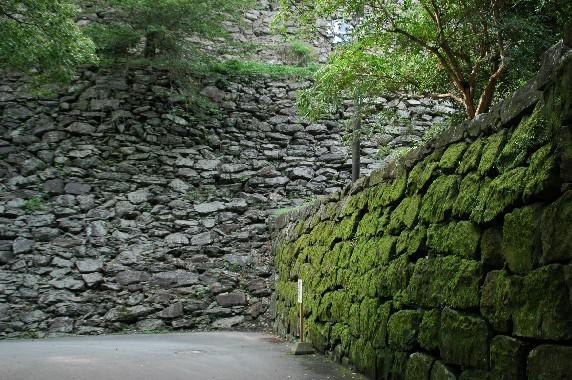 和歌山城公園内を散策  5_b0093754_1143416.jpg