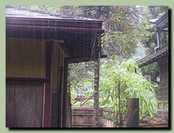 梅雨前線_f0079990_10415872.jpg