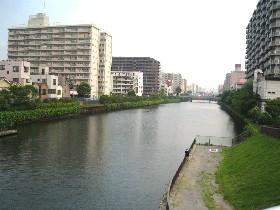 水辺のトレイル (江東区)_a0073540_7151620.jpg