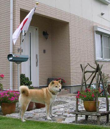 2007年7月17日(月)・・・海の日_f0060461_9372849.jpg