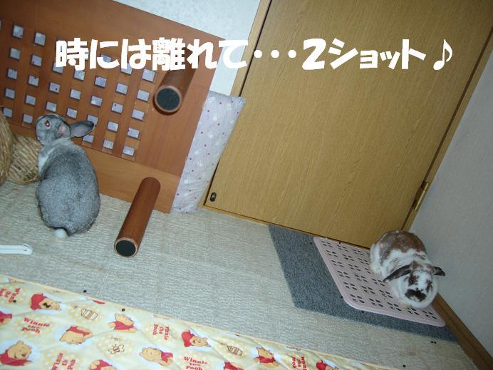 d0032004_19481053.jpg