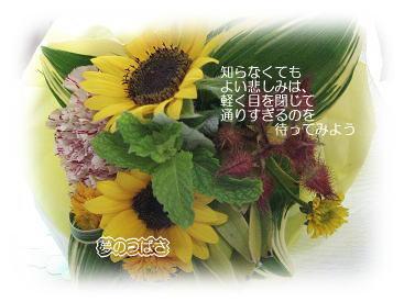 f0054187_912989.jpg
