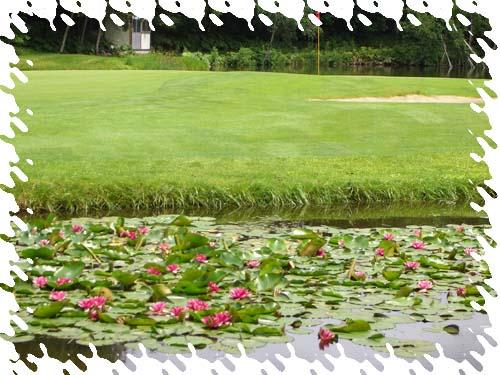 ゴルフのあとはビール_b0019313_1843583.jpg