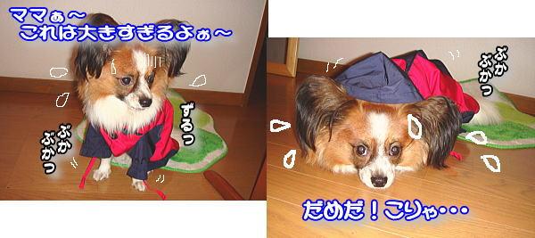 f0011845_10345632.jpg