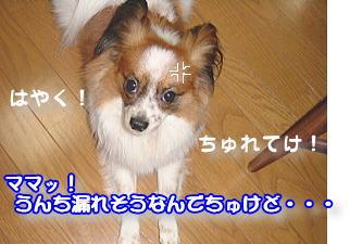 f0011845_10421758.jpg