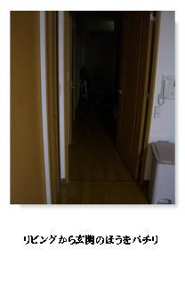 f0054868_2245820.jpg