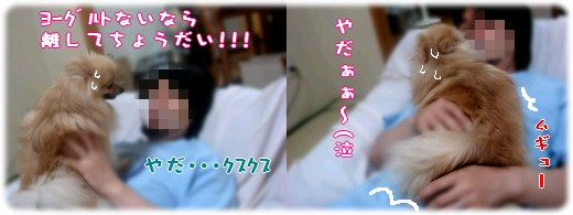 b0078073_2318077.jpg