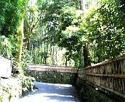 哲学の道と喫茶GOSPEL(ゴスペル)_f0023482_22115523.jpg