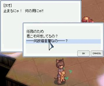 b0032787_2052588.jpg