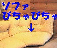 b0090201_15253357.jpg