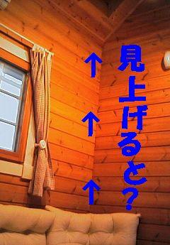 b0090201_15293785.jpg