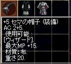 d0055501_18541982.jpg