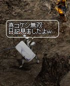 b0078004_255215.jpg