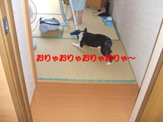 f0059334_938426.jpg