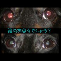 b0048649_23591015.jpg