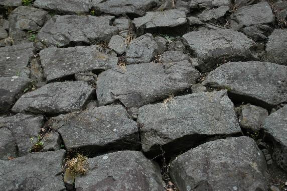 和歌山城の石垣の刻印_b0093754_0314120.jpg