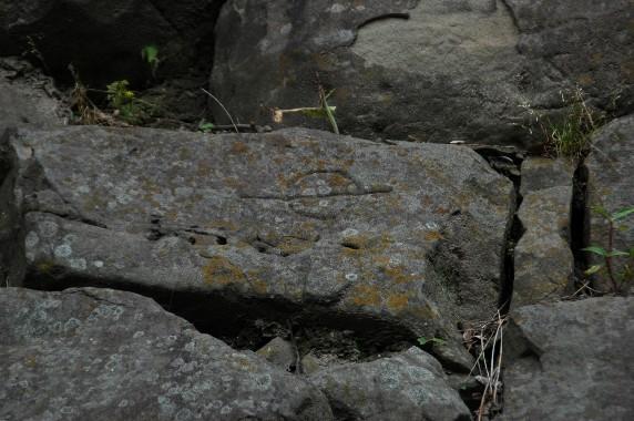 和歌山城の石垣の刻印_b0093754_0315660.jpg
