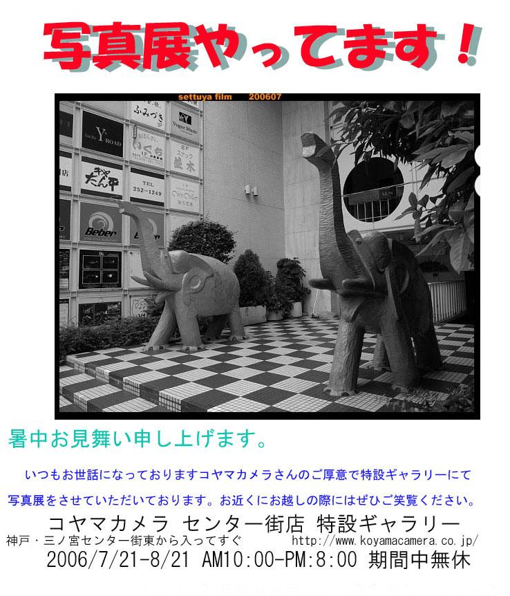 コヤマカメラにて写真展_c0042324_11165088.jpg
