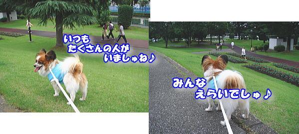 f0011845_048536.jpg