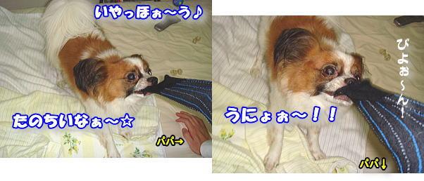 f0011845_0491939.jpg