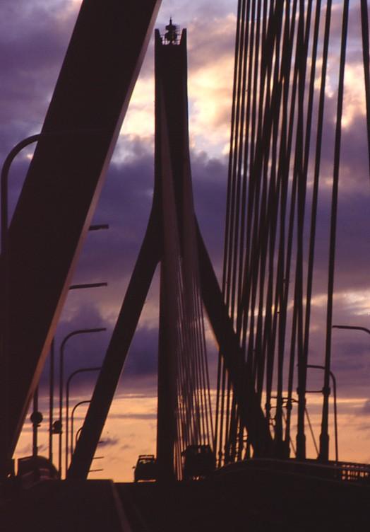 巨大なハープ橋_f0055131_6393483.jpg