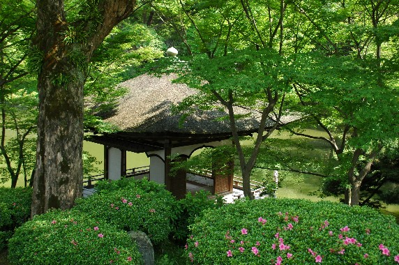 和歌山城公園内を散策 10_b0093754_0541451.jpg