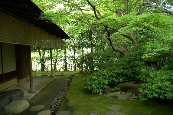 和歌山城公園内を散策 10_b0093754_0542737.jpg