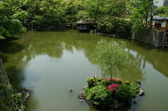 和歌山城公園内を散策 10_b0093754_1343922.jpg