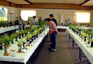 ◆大阪の秋季展示会                (No.70)_b0034163_2392090.jpg