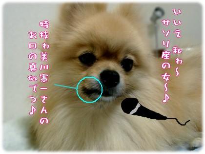 b0078073_21563917.jpg