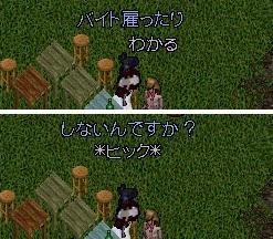 Starting Line_e0068900_20481355.jpg