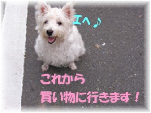 f0039907_213161.jpg