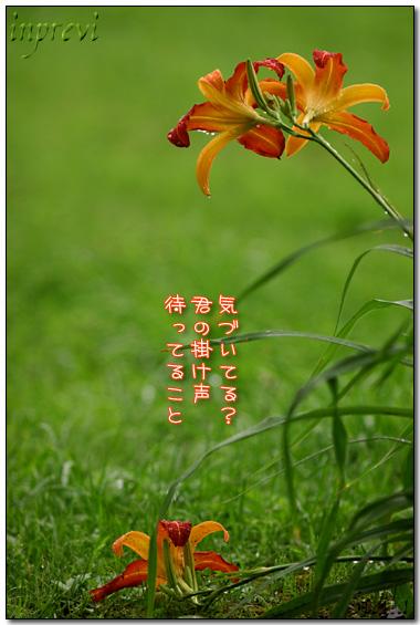 d0015026_8382569.jpg