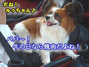 f0011845_856651.jpg
