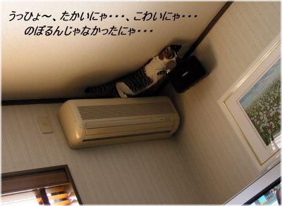 b0097848_12574565.jpg