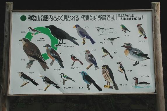 和歌山城公園内を散策  12_b0093754_120180.jpg