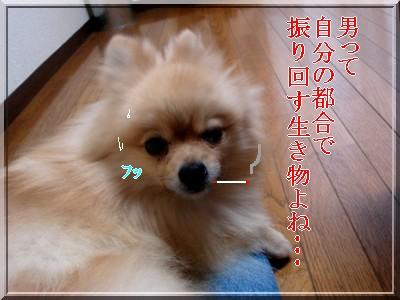 b0078073_21545396.jpg