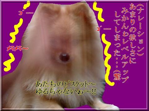 b0078073_220315.jpg