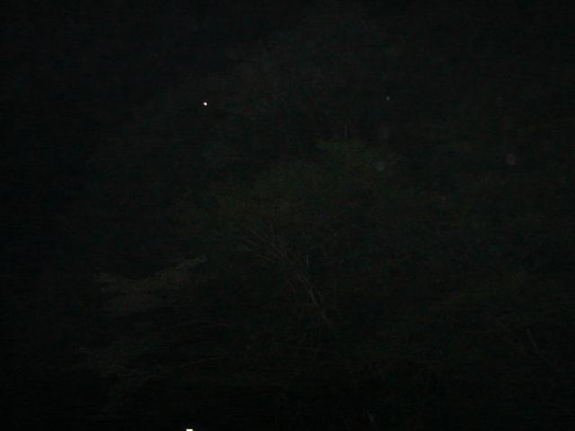f0104277_99932.jpg