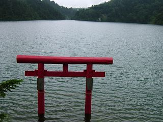 池めぐりコース_a0023246_21521083.jpg