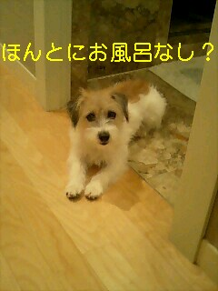 c0022147_8344598.jpg