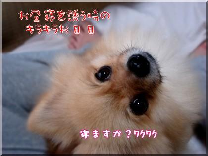 b0078073_23463062.jpg