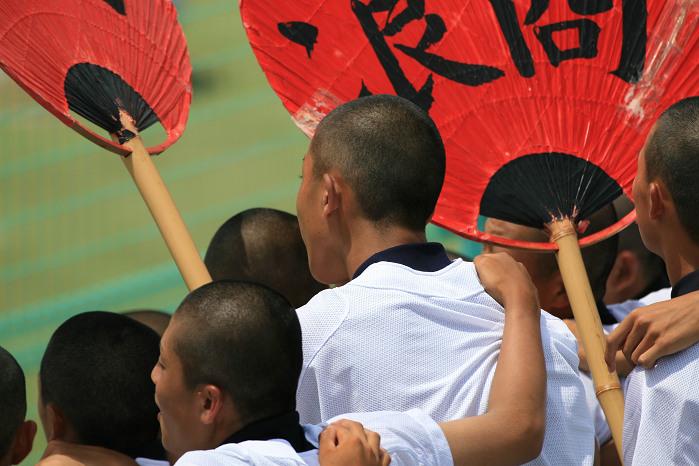 第88回全国高校野球 大阪大会 vol.3_a0044279_028333.jpg